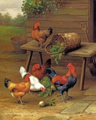 chickens art paint by numbers