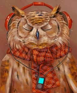 Owl Listening To Music paint by numbers