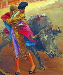 Spanish Bullfighter paint by numbers