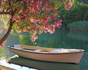 Boat On River paint by numbers