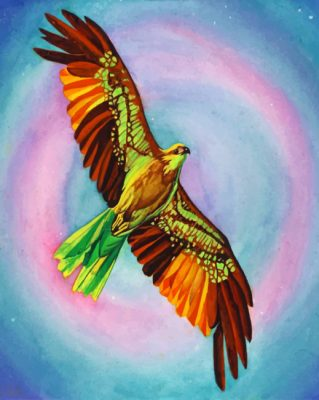 Colorful Hawk Bird paint by numbers