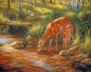 Deer Family In Forest paint by numbers