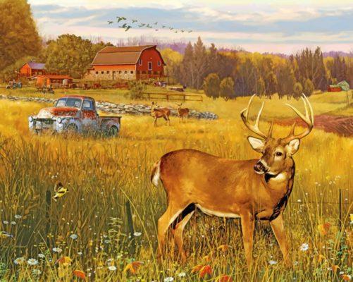 Deer In Farm Field paint by numbers