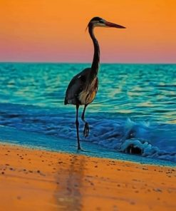 Heron Bird At The Beach paint by numbers