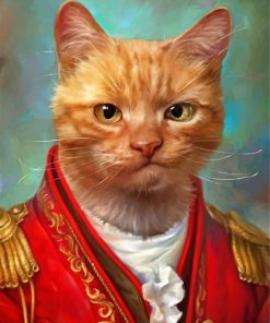 Mr General Cat paint by numbers