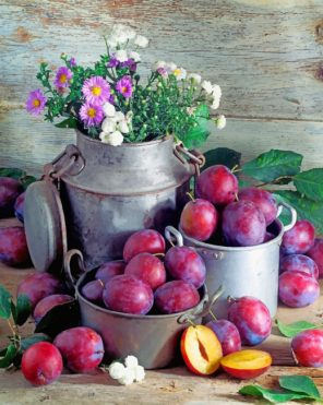 Plums Fruit paint by numbers