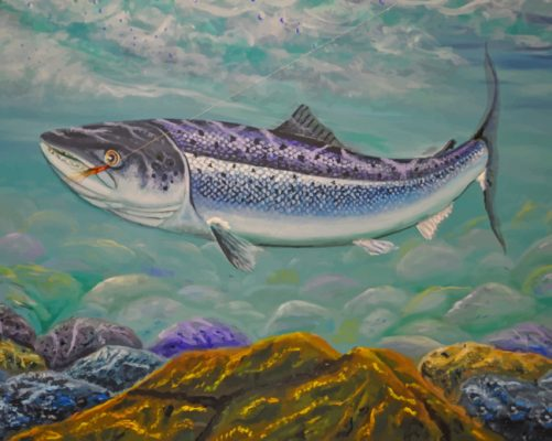 Salmon Fish Art paint by numbers