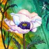 White Poppy Art paint by numbers