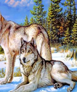 Wolves In Snow paint by numbers