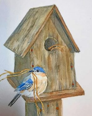 Aesthetic Bird House Paint by numbers