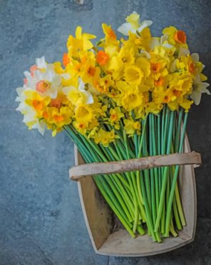 Aesthetic Daffodils Flowers Piant by numbers