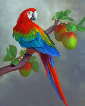 Apples And Parrot paint by nbumbers