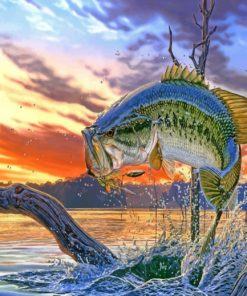bass fish paint by numbers