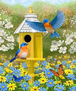 Colorful Garden Bluebirds And Birdhouse Paint by numbers