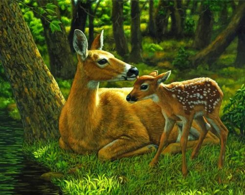 deer and fawn paint by numbers
