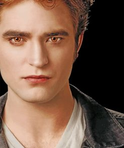 Edward Cullen Twillight Paint by numbers