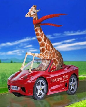 giraffe in car paint by numbers