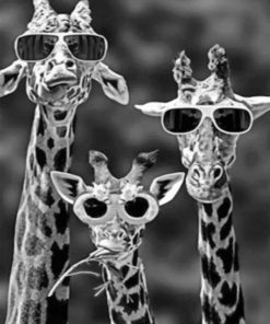 Giraffes With Sunglasses paint by numbers