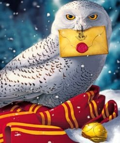 harry potter hedwig paint by numbers