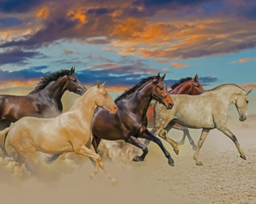 horses running in desert paint by numbers