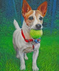 Jack Russell Carrying A Ball Paint by nummbers
