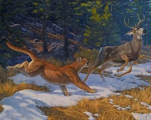 lion chasing deer paint by number