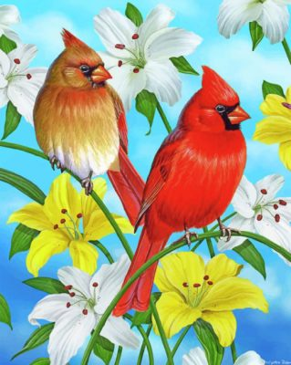 Cardinals Birds paint by numbers