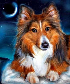 Sheltie Dog ppaint by numbers