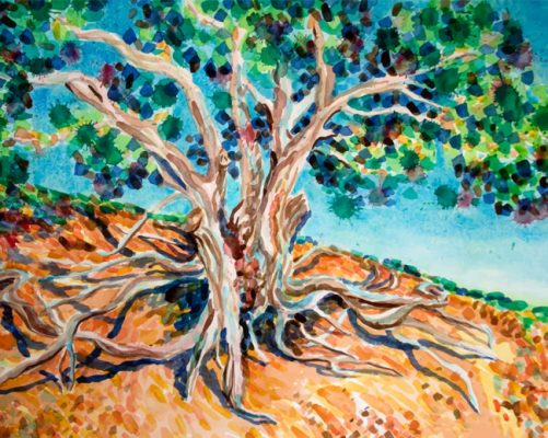 tree roots paint by numbers