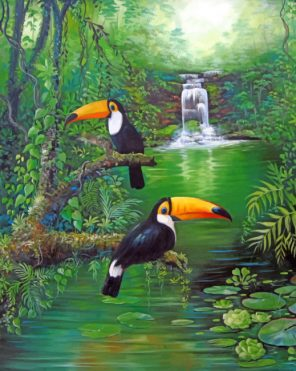 Tucan Birds Piant by numbers