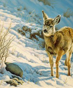 winter fawn mule deer paint by numbers