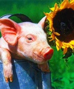 Aesthetic Pig And Sunflower Paint by numbers