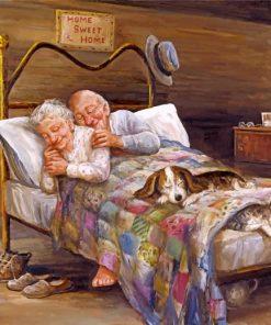 Couple Sleep Hug paint by numbers