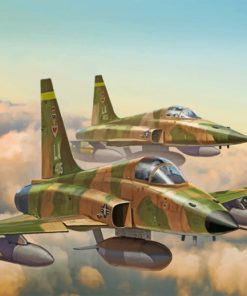 F 5e tiger Aircraft paint by number