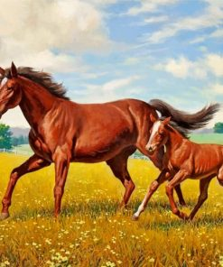 Horses In Meadow Paint by numbers