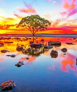 Lake Tree At Sunset Paint by numbers