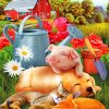 Pig And Pets Paint by numbers