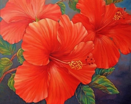 Red Hibiscus paint by numbers