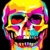 Skull Pop Art Paint by numbers