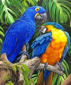 Tropical Macaws paint by numbers