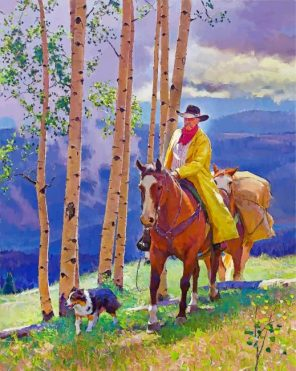 Western Cowboy Paint by numbers