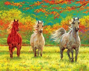Wild Horses Paint by Numbers