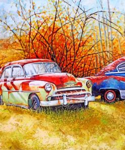 Abandoned Classic Cars Paint by numbers