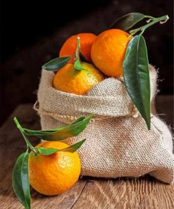 aesthetic-mandarine-paint-by-numbers