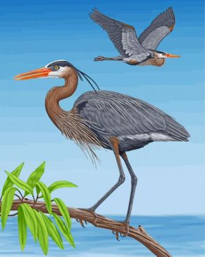 great-blue-heron-birds-paint-by-number
