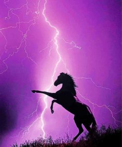 Horse Lightning Paint by numbers
