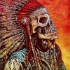 Native American Skull Paint by numbers