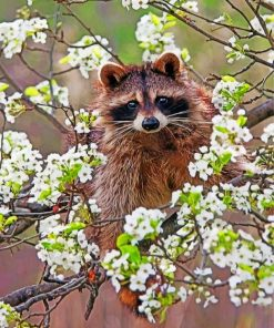 Raccoon In Blossoms Paint by numbers