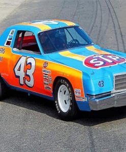 richard-petty-race-car-paint-by-numbers
