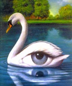 swan-eye-paint-by-numbers